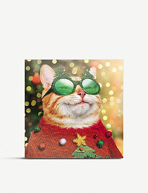 THE GREAT BRITISH CARD COMPANY Cat in a festive jumper Christmas cards pack of 16