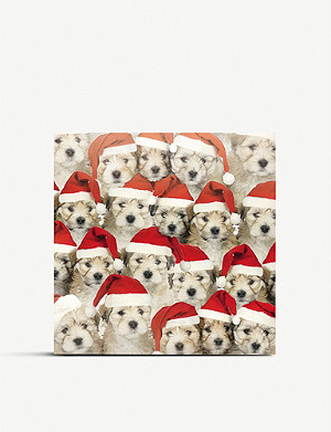 THE GREAT BRITISH CARD COMPANY Fun Dogs Christmas cards pack of 8
