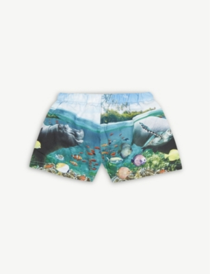 MOLO Newton sea animal print swim shorts 9-18 months