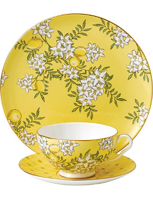 WEDGWOOD Lemon & Ginger tea garden 3-piece china set