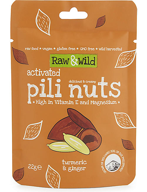 RAW & WILD Activated Turmeric and Ginger Pili Nuts 22g