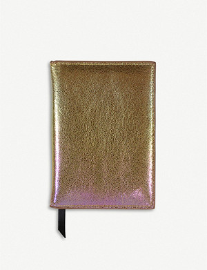 PAPERCHASE Metallic passport cover