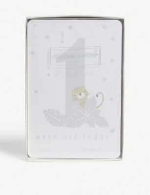 THE LITTLE WHITE COMPANY Special moment baby cards