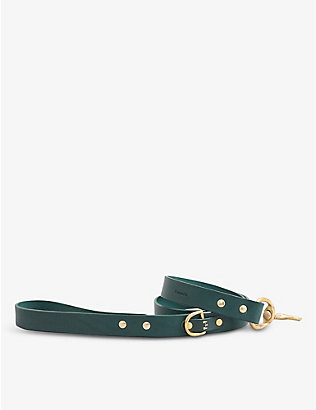 KINTAILS: Standard leather dog lead