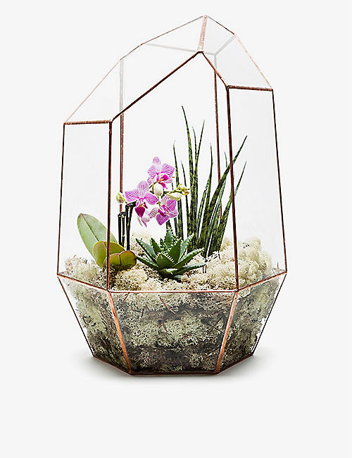 THE URBAN BOTANIST: Supersize Gem copper terrarium