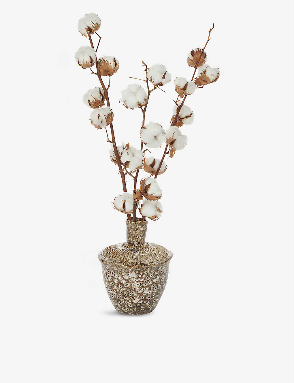YOUR LONDON FLORIST: Exclusive Pure Cotton dried flowers with vase