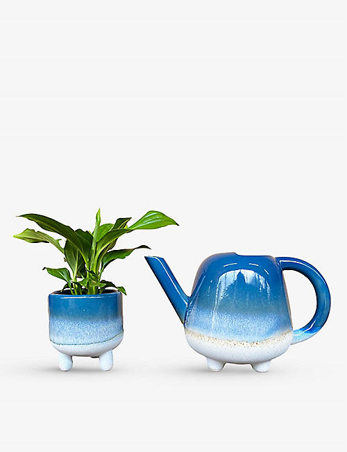 CANOPY PLANTS: Mini plant and watering can set of two